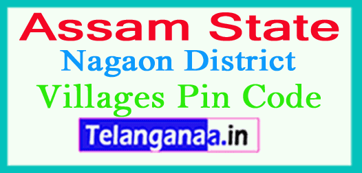 Nagaon District Pin Codes in Assam State