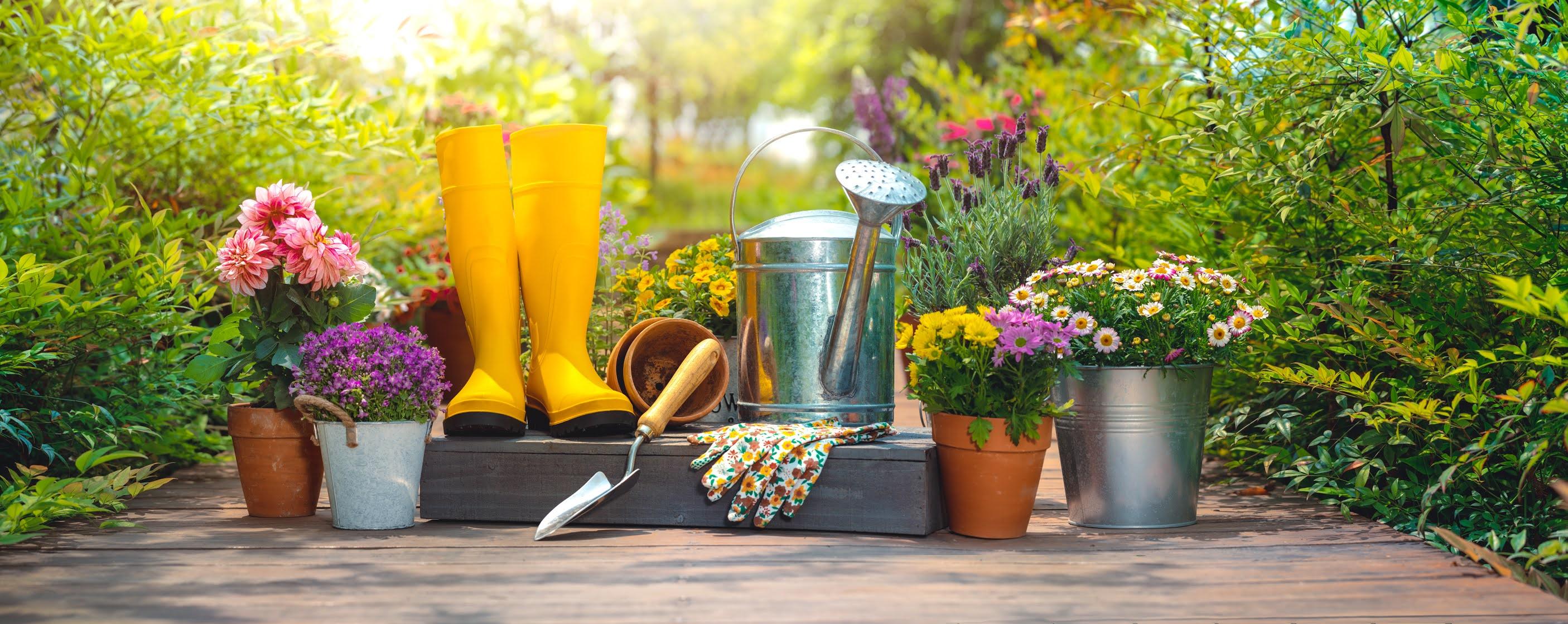 Spring Garden Tools