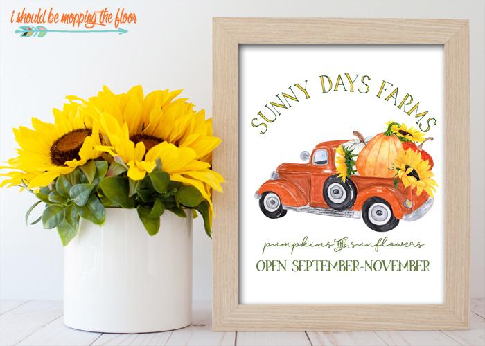 Sunny Days Farms