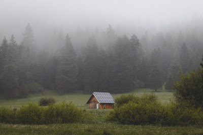 cabin-in-the-woods-with-solar-panels