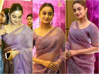 Namitha Pramod Sexy Photos in Transparent Saree