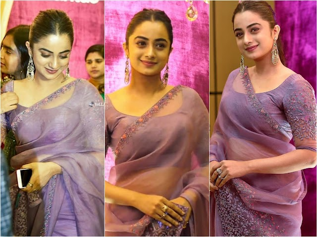 Namitha Pramod Sexy Photos in Transparent Saree