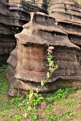 Karst, Red Stone Forest National Geological Park, Hunan, China