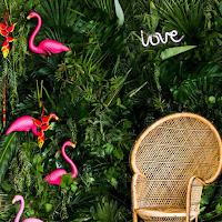 fleuriste la maison végétale à Tournon blog mariage unjourmonprinceviendra26.com