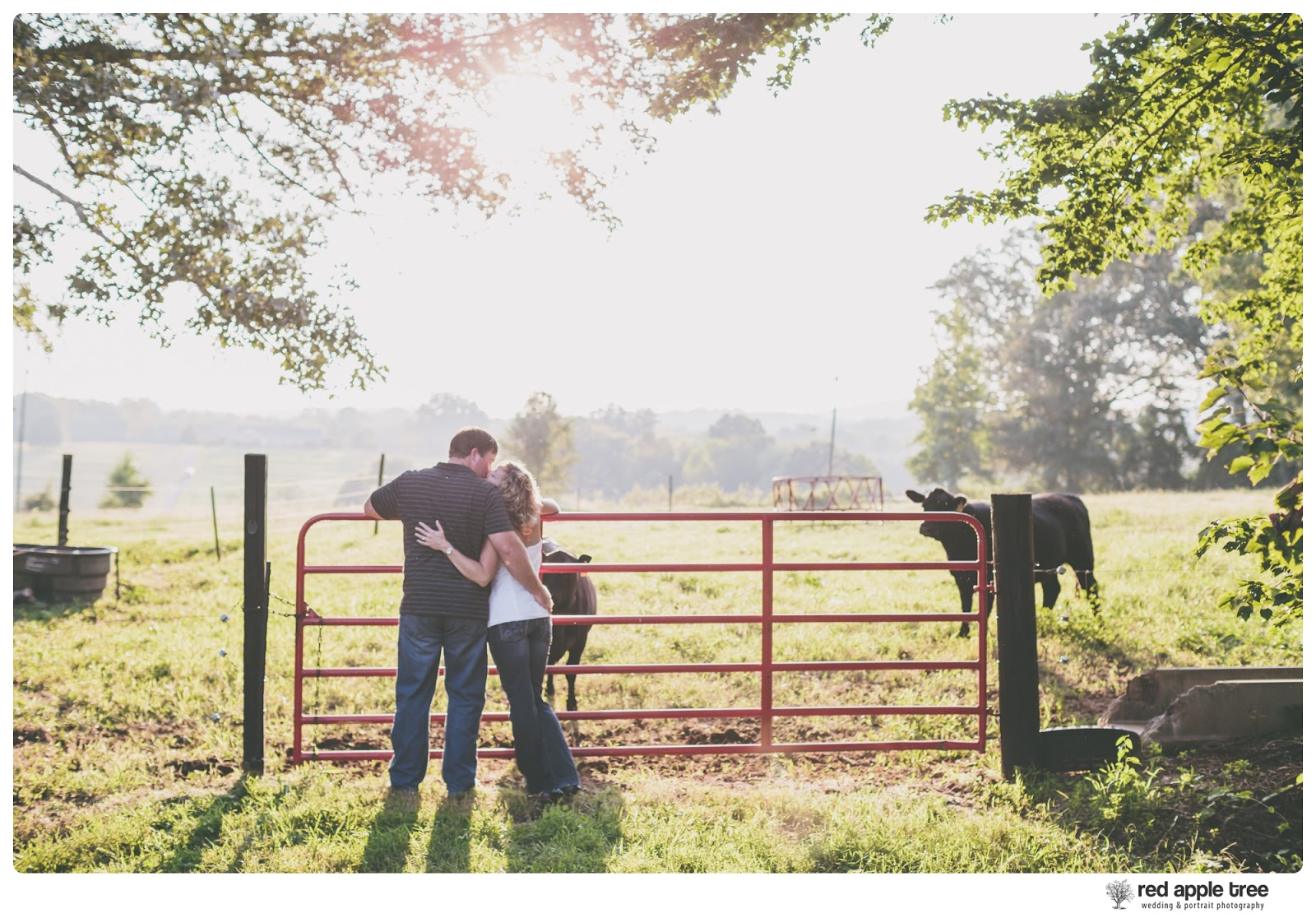 red apple tree photography: Heather + Travis Engagement at