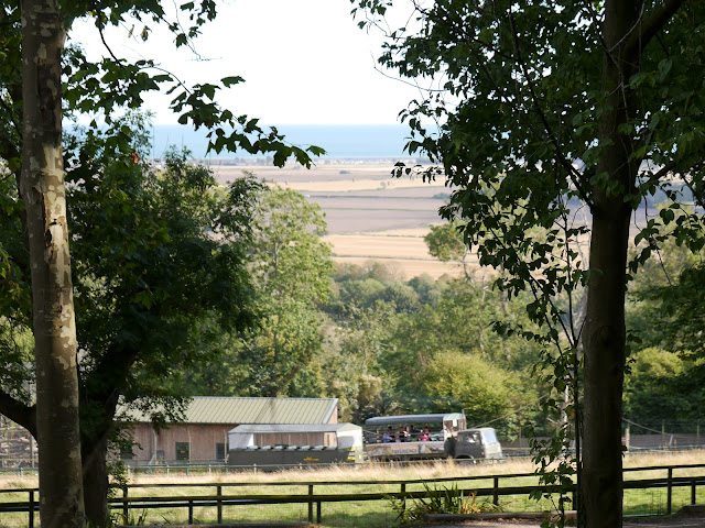 Port Lympne safari truck and view