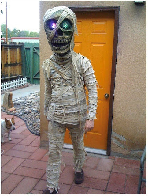 Cool Mummy Costume
