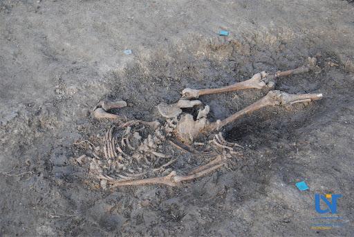 Romania-mass_grave_05.jpg