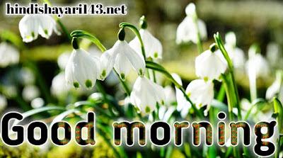Good morning flowers image full HD
