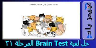 حل المرحلة 21 Brain Test