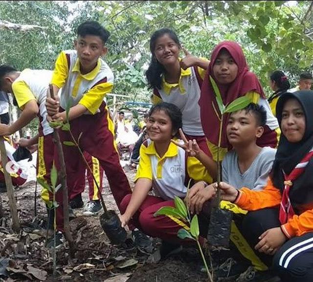 tanam-mangrove