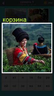 на плантации девушка собирает урожай в корзину 667 слов 9 уровень