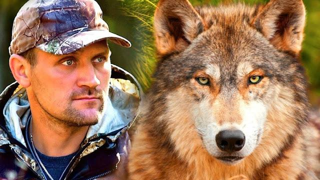 Когда волк пришёл к Степану на помощь, он вспомнил что несколько лет назад спасал волчонка