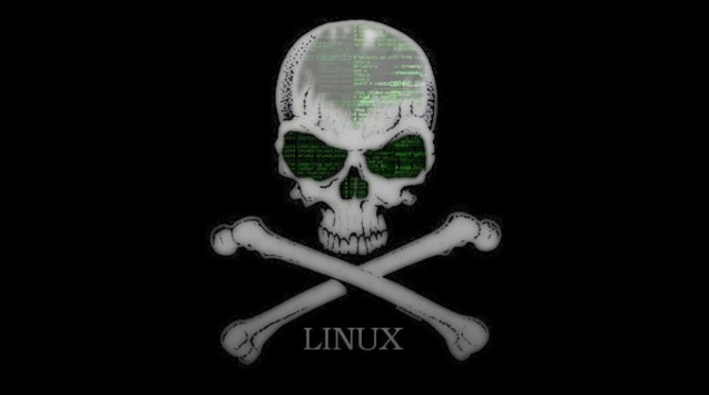 Cara Instal Kali Linux di Android [Panduan Lengkap]