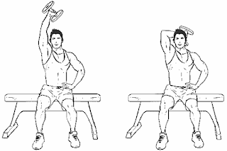 6. Overhead Dumbbell Tricep Extension
