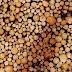 Opzegging Convenant Duurzaamheid Biomassa door vijf NGO's verbaast Energie-Nederland