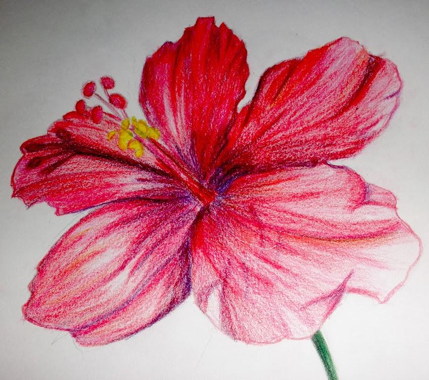 Panitia Pendidikan Seni Visual: February 2014