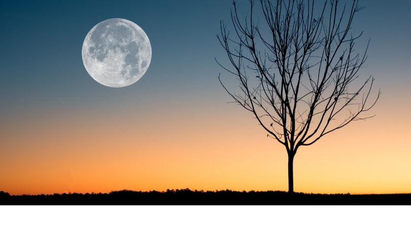 Menyikapi mimpi melihat bulan