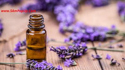 Lavender Essential Oil For Cold Sores - Sardi Se Bachne Ke Upay