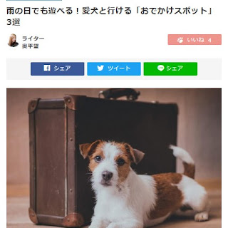 【WEB紹介】わんにゃ365に愛犬ヴィレッジが掲載されました