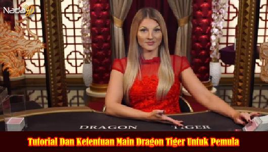Tutorial Dan Ketentuan Main Dragon Tiger Untuk Pemula