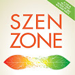Szen Zone (Book Review)