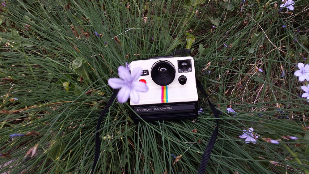 Bien-aimé Les moineaux de la mariée: Des clics, des photos et des souvenirs ! OO77