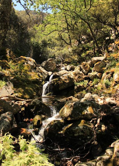 Cascada Hoz de Carboneros