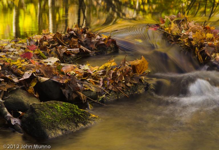John Munno Photography: Blog