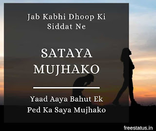 Jab-Kabhi-Dhoop-Ki-Siddat-Ne-Sataya-Mujhako - Sad-Shayari