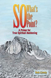 So What's the Point?: A Primer for True Spiritual Awakening by Bob Lively