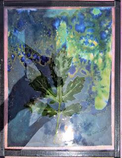 Wet cyanotype_Sue Reno_Image 376