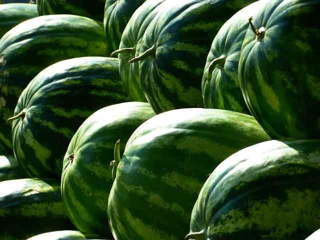 كيفية اختيار البطيخ ذات نوعية جيدة للرضع؟