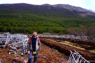 Turbal en el Valle de Andorra en Ushuaia de camino al Lago de los Témpanos i Glaciar Vinciguerra.