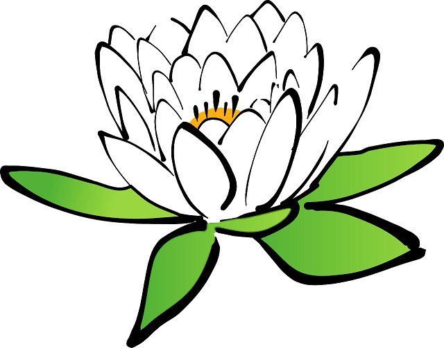 lotus flower with cartoon view