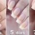 Sumerge tus uñas en estos 2 ingredientes y mira como en poco tiempo…