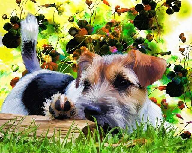 Cartoon Puppy Images HD