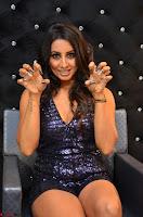 Sanjjana at her best expressions as aggresive cat   beautiful Actress Sanjjana Exclusive Pics 052.JPG