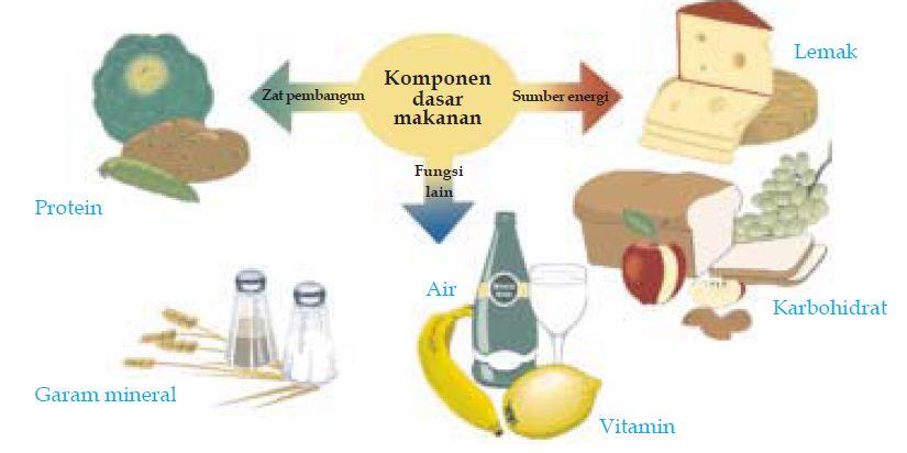 Tabel Contoh Makanan Yang Mengandung Protein, Kalori & Lemak