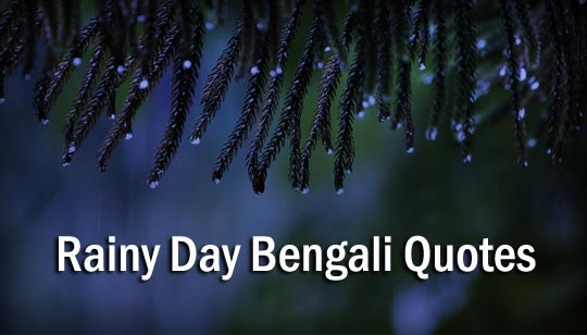 Rainy Day Bengali Quotes, SMS and Social Media Status