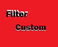 Filter Custom
