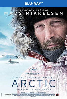 Arctic 2018 BD25 Sub