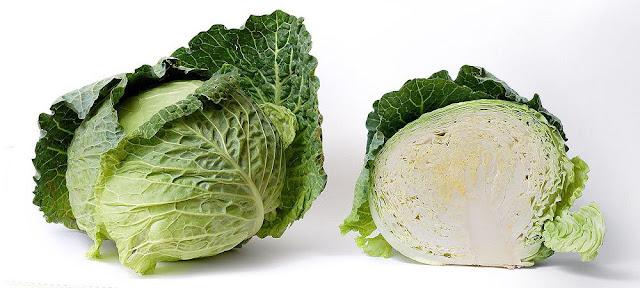 Cải Bắp - Brassica oleracea - Nguyên liệu làm thuốc Chữa Đau Dạ Dày