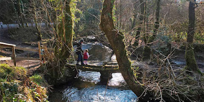 Mother and daughter walking across a log over a river at a Cornish woods