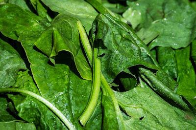 शाकाहारियों के लिए प्रोटीन के सबसे बेहतर स्त्रोत कोनसे है? - What is the best Protein Source for Vegetarians in Hindi