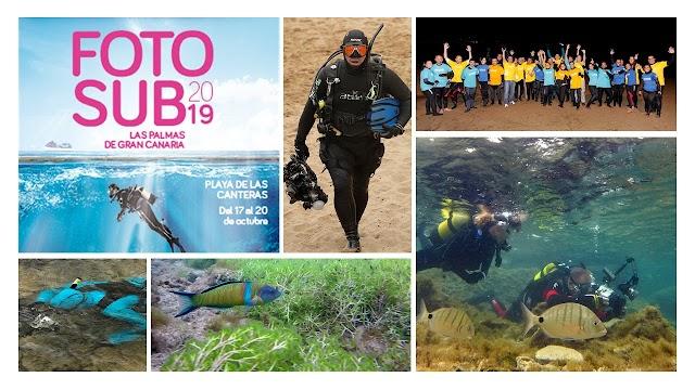 Fotosub o cómo poner en valor la riqueza submarina de la Playa de Las Canteras