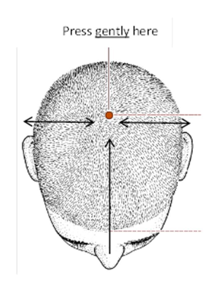 Sabine Acupuncture Blog | Sabine Acupuncture - Part 4