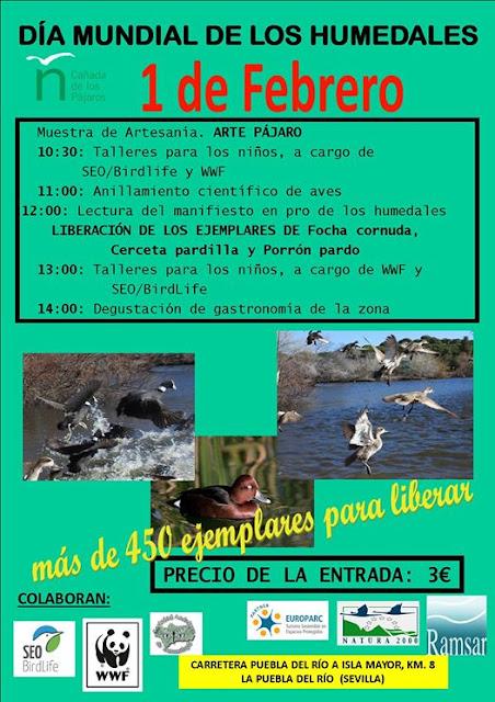 Día mundial de los humedales, 1 de Febrero 2020. Grupo Local SEO-Sevilla.