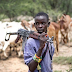 Herdsmen/Farmer's Clashes: Abia House Of Assembly Set To Pass Anti-Grazing Bill
