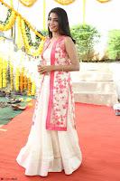 Aishwarya Lekshmi looks stunning in sleeveless deep neck gown with transparent Ethnic jacket ~  Exclusive Celebrities Galleries 052.JPG